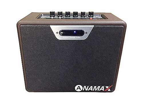 Loa bluetooth karaoke Ananax N01, kèm 2 micro không dây