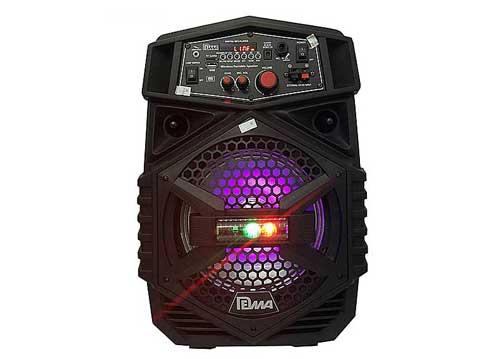 Loa bluetooth - karaoke DM-EN8A kèm microphone