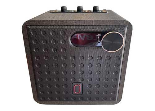 Loa bluetooth karaoke JYX NX201, kèm 2 micro không dây