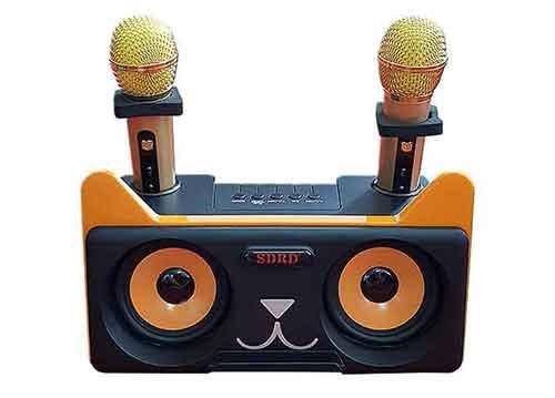 Loa bluetooth karaoke SDRD SD-305, kèm 02 mic không dây