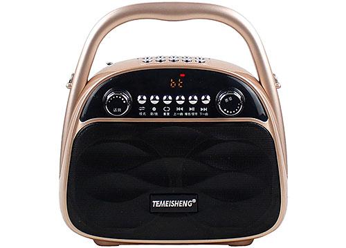 Loa bluetooth, karaoke Temeisheng A4-6