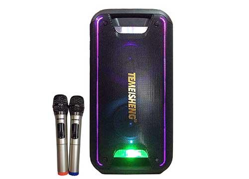 Loa bluetooth karaoke temeisheng TMS-502, công suất max 300W