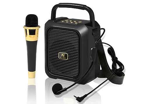 Loa bluetooth karaoke YS-29, loa xách tay có kèm 2 micro