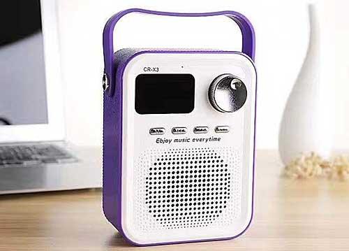 Loa Bluetooth Mini 2.1 CR-X3