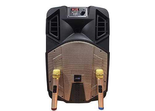 Loa di động Bose ED15F, loa kéo hát karaoke vỏ nhựa, max 450W