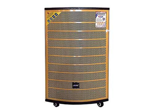 Loa di động BOSE DK745, loa kéo karaoke vỏ gỗ, công suất max 600W