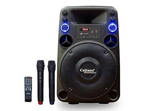 Loa di động Caliana TO-12B, loa kéo karaoke, công suất max 350W