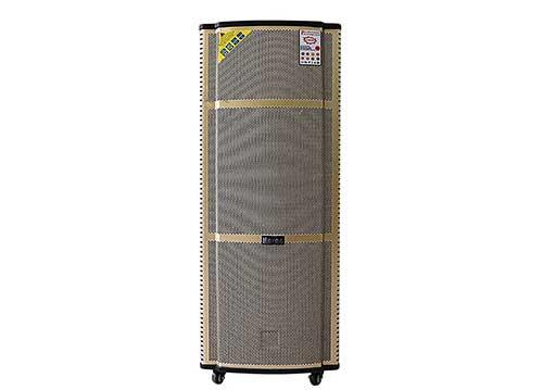 Loa di động Hosan DX2-9915, loa kéo karaoke 2 bass có LCD 14 inch