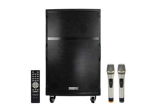 Loa di động Temeisheng A175, loa kéo karaoke, công suất max 800W