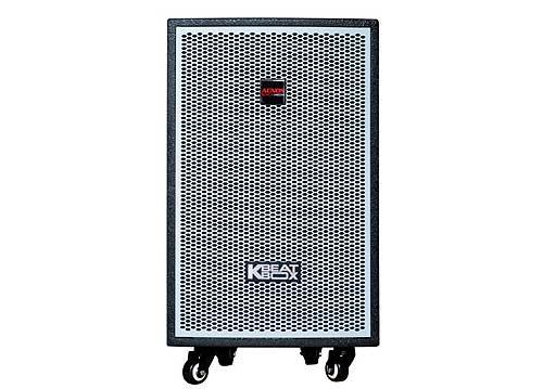Loa điện ACNOS KDNet-3011, loa karaoke vỏ gỗ, RMS 300W