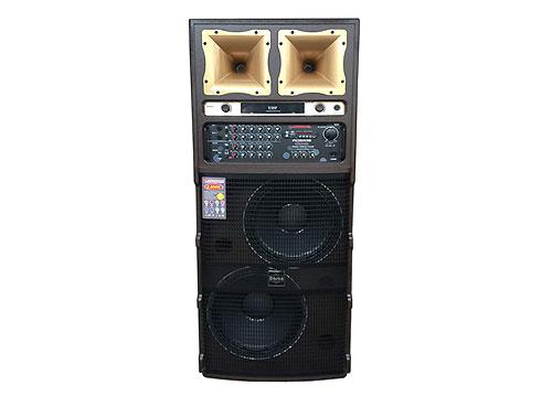 Loa điện Hosan T-501, loa chơi nhạc và karaoke cao cấp