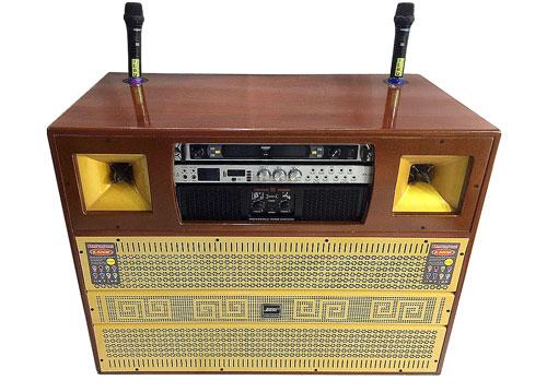 Loa điện MT-8900, loa hát karaoke công suất lớn, power max 1000W