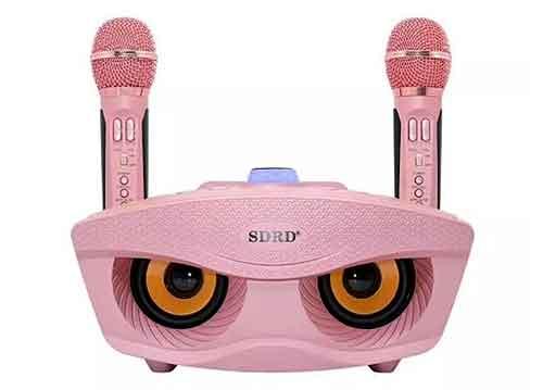 Loa karaoke bluetooth SDRD SD-306, kèm 2 micro không dây