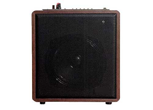 Loa karaoke bluetooth Zansong S88, vỏ bằng gỗ, công suất 35W