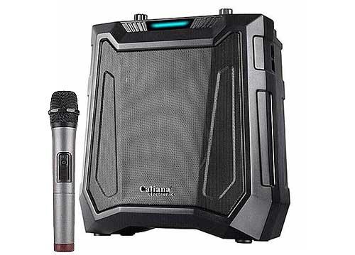 Loa karaoke Caliana DE-06B, cỡ bass 6.5 inch, công suất thực 60W