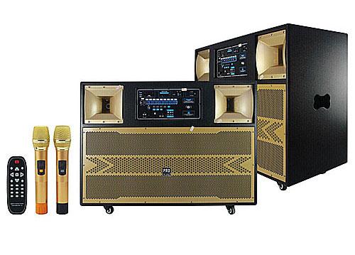 Loa karaoke di động công suất lớn, board công suất 450W