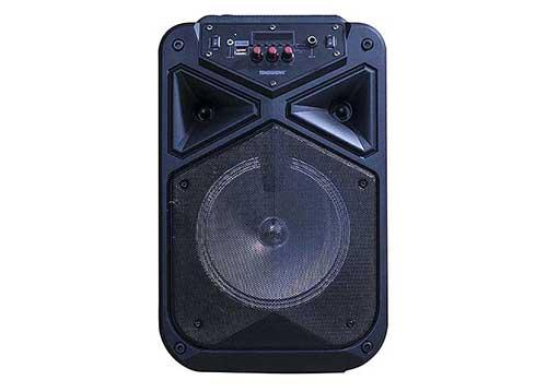 Loa karaoke mini Temeisheng TMS-806, loa xách tay, max 150W