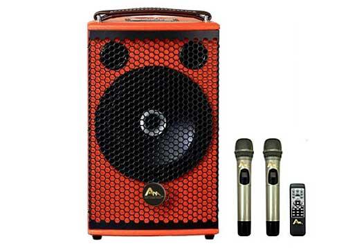 Loa kéo ANA W550, mẫu loa karaoke mini, kèm 2 mic không dây