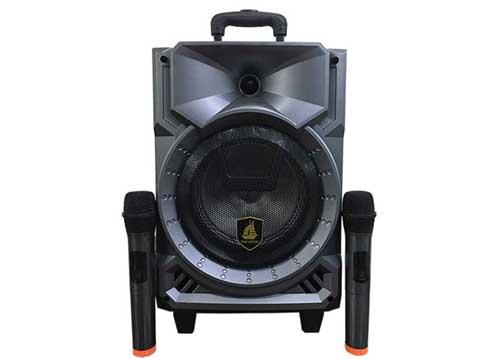 Loa kéo Carry Kim CK308, loa di động karaoke mini, kèm 2 micro