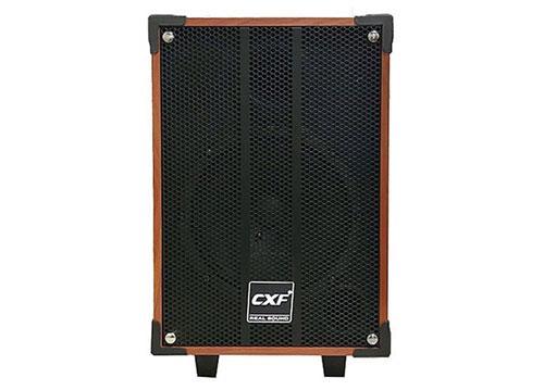 Loa kéo CXF GL-808, loa karaoke vỏ gỗ 2.5 tấc, max đỉnh 100W