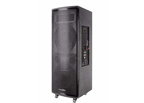 Loa kéo di động a/d/s 212H - loa bass đôi cỡ 12 inch - công suất 800W