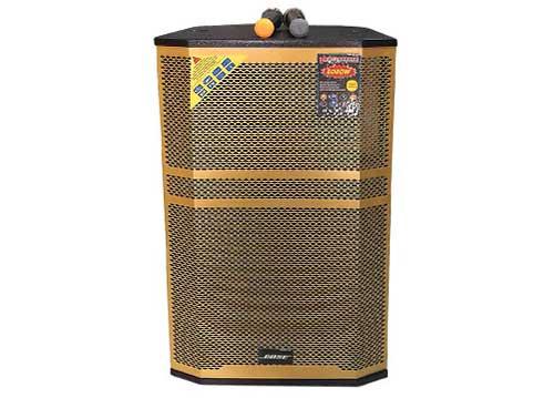 Loa kéo di động Bose 15B, loa gỗ, hát karaoke công suất lớn