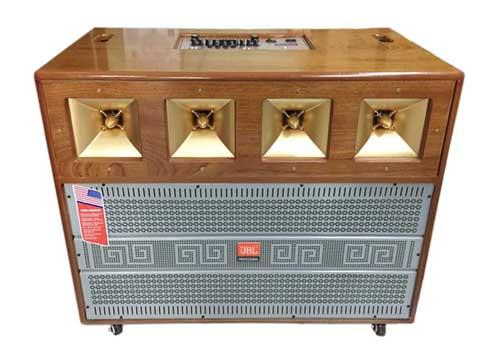 Loa kéo di động P100, loa karaoke công suất lớn-PMPO 1000W