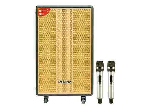 Loa kéo Fushika PK-10, loa karaoke cao cấp, bass 4 tấc