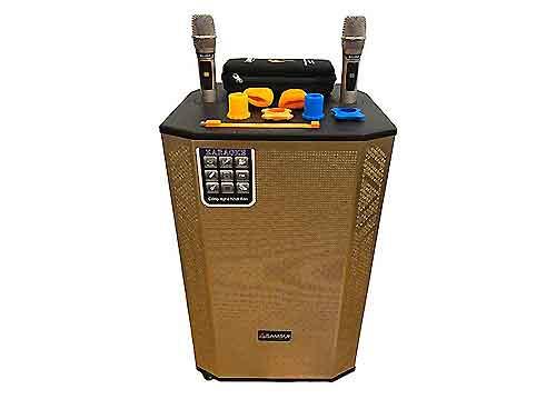 Loa kéo SAMSUI 881, loa vali kéo cao cấp - bass 4 tấc