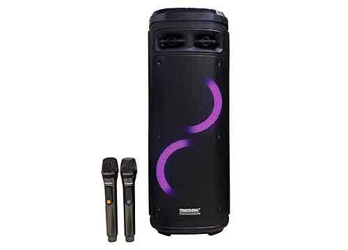 Loa kéo Temeisheng A210-06, loa karaoke 2 bass, có đèn led