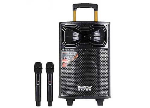 Loa kéo Temeisheng QX-0831, loa gỗ hát karaoke di động cỡ 3 tấc
