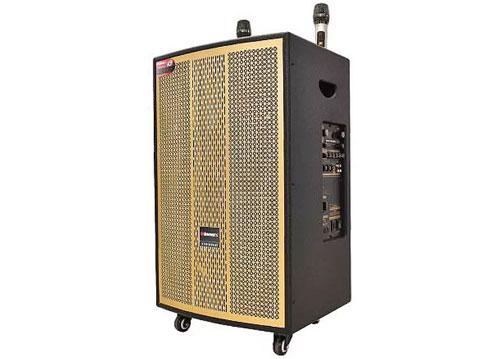 Loa kéo Winmax W5555, loa karaoke 2 đường tiếng, bass 3 tấc