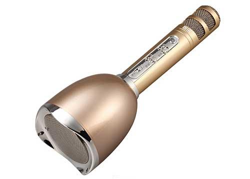 Microphone Karaoke Kèm Loa Tosing Plus