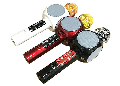Microphone karaoke kèm loa WS-1816