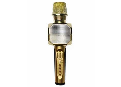 Microphone kèm loa SD-10 chính hãng