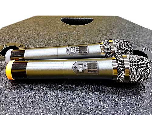 Loa di động Prosing W15A, loa kéo hát karaoke, power max 750W