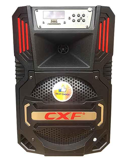 Loa kéo di động CXF 805 2 tấc
