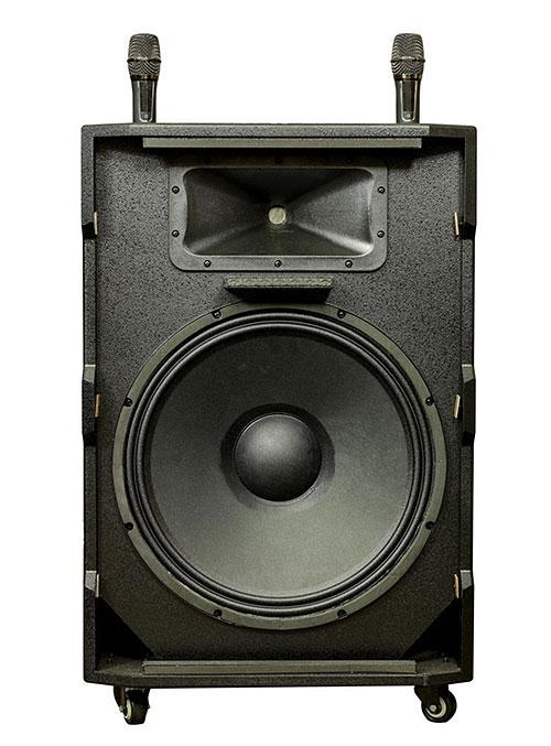 Loa kéo Prosing W-18C, loa karaoke cao cấp, củ bass 5 tấc