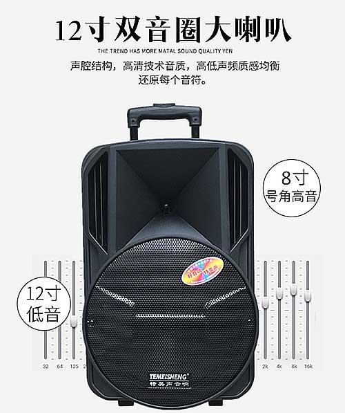 Loa kéo Temeisheng A12-65, bass 3 tấc